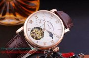 Replique Patek Philippe Automatique Tourbillon Moonphase PPMN29